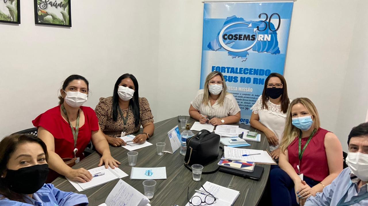 Cosems e NEMS alinham demandas de municípios do RN